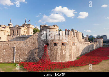 Tower of London, Installation Blood Swept Lands and Seas of Red, World War I memorial, City of London, London, England, - Stock Photo