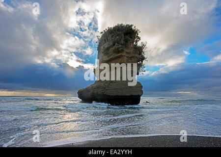 Rock formation, Punakaiki, Paparoa National Park, West Coast, South Island, New Zealand, Pacific - Stock Photo