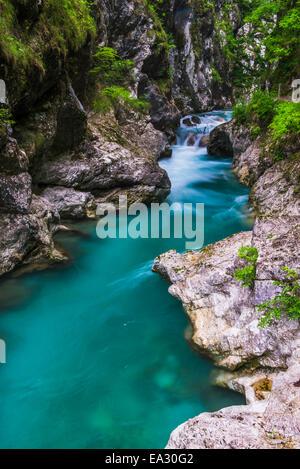 Tolminka River, Tolmin Gorges, Triglav National Park (Triglavski Narodni Park), Slovenia, Europe - Stock Photo