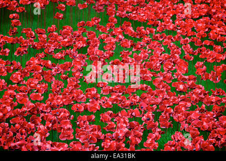 Blood Swept Lands and Seas of Red installation at The Tower of London, London, England, UK - Stock Photo