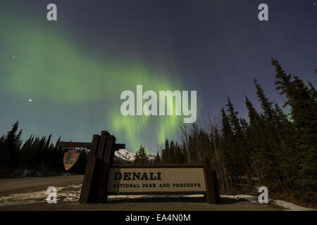 Sign,Alaska,Aurora Borealis,Denali Np - Stock Photo
