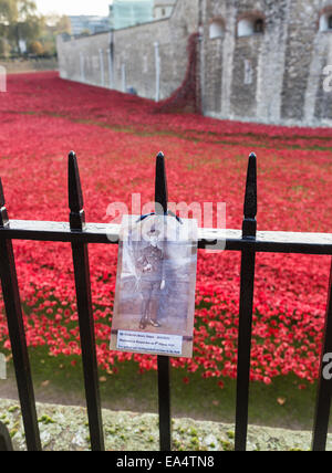 Tribute to a soldier on railings at the display of poppies at The Tower Of London Remembers, Blood Swept Lands and - Stock Photo