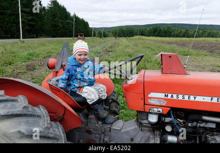 A laughing boy sat on an old Massey Ferguson farm tractor - Stock Photo