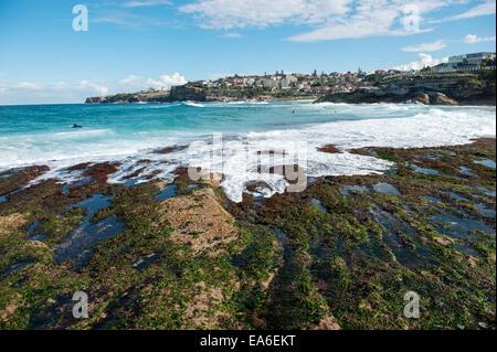 Australia, New South Wales, Sydney, Tamarama beach - Stock Photo