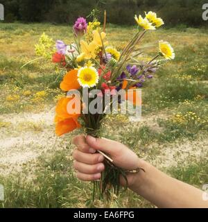 Hand holding bunch of flowers - Stock Photo