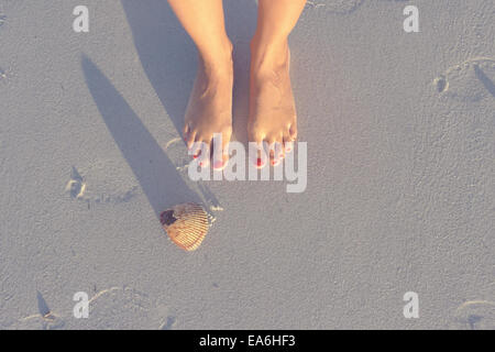 Feet and shell on beach - Stock Photo