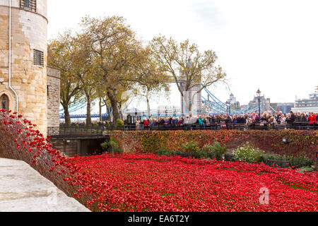 Tower of London Poppies - Stock Photo