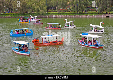 Filipino families and tourists enjoy an afternoon on Burnham Pond in paddle boats at Burnham Park, Baguio City, - Stock Photo