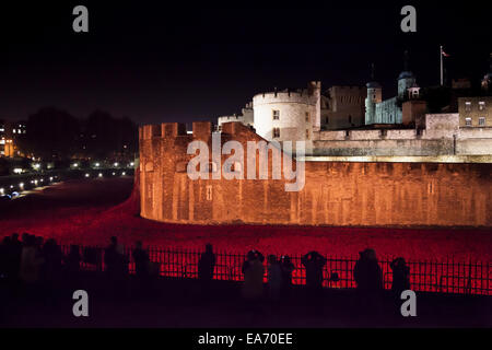 Ceramic Poppies at the Tower of London planted to mark the centenary of the beginning of the First World War, floodlit - Stock Photo