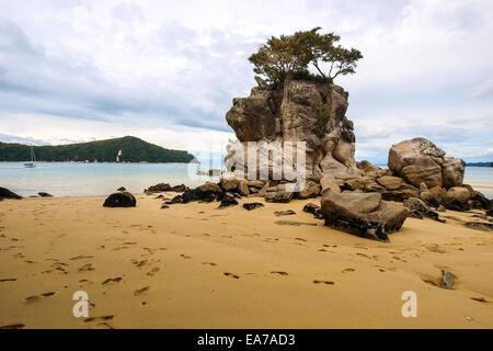 Rock shore in Abel Tasman national park, South island, New Zealand - Stock Photo