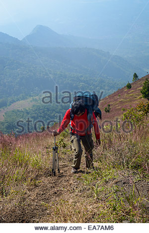 A woman climbs Mount Guntur in Western Java Island, Indonesia. - Stock Photo