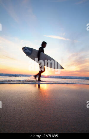 Low angle view of surfer with surfboard walking along waters edge during sunset Constantine Bay near Padstow North - Stock Photo