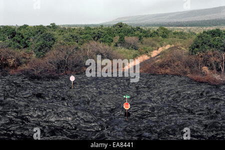 Only two stop signs remain along a road covered by lava from a volcano eruption in the1980s on the Big Island of - Stock Photo