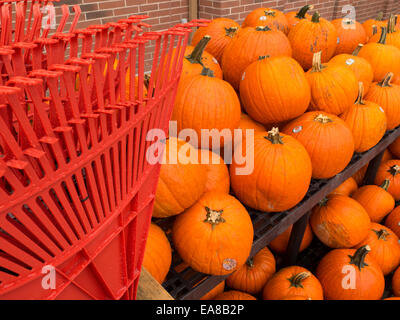 A Halloween, Thanksgiving and fall display outside a small town store. - Stock Photo