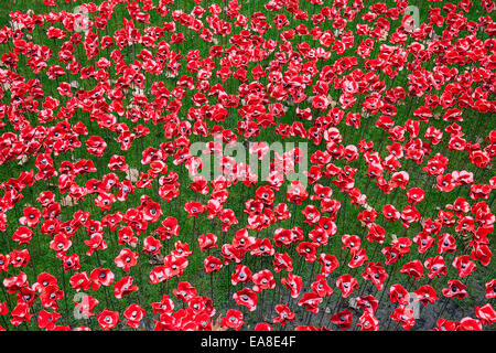 Commemorative display of ceramic poppies in the moat at the Tower of London. The poppies commemorate the 100th anniversary - Stock Photo