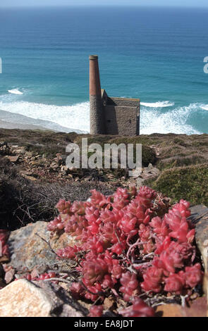Looking down at Wheal Coates disused Tin Mine on the cliff side above the sea at Chapel Porth near St Agnes on the - Stock Photo