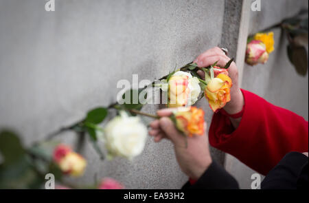 Berlin, Germany. 9th Nov, 2014. Visitor place flowers in gaps of the Berlin Wall memorial in Berlin, Germany, 9 - Stock Photo