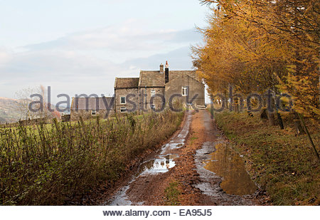 Holwick, Middleton-in-Teesdale, Barnard Castle, Co Durham, UK 9th November 2014. A bright day in Upper Teesdale - Stock Photo