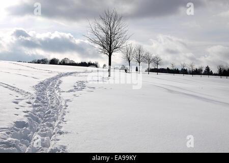 Snowy winter landscape near Engenhahn in the Taunus mountains, Hesse, Germany - Stock Photo