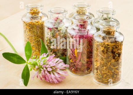 healing herbs in glass bottles, herbal medicine Stock Photo