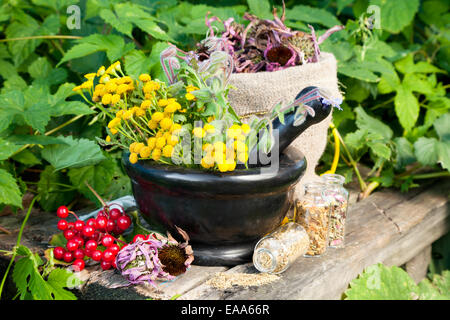 healing herbs in mortar, herbal medicine - Stock Photo