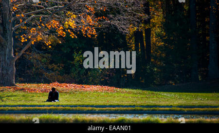 Lone person meditating on an a warm sunny Autumn day under a tree. - Stock Photo