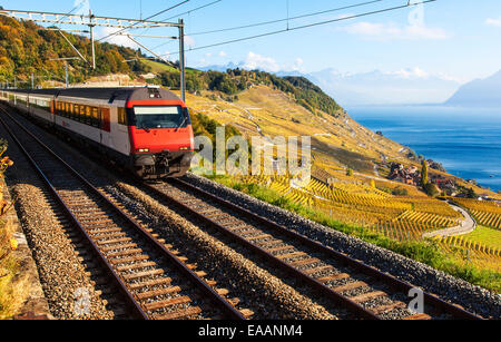 A Train Passing Through the World Heritage Area of Lavaux, Switzerland - Stock Photo