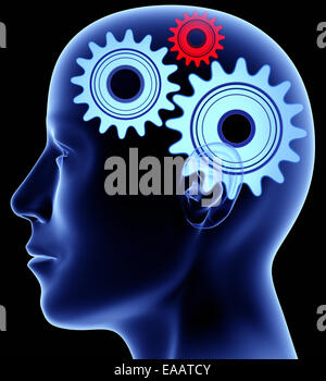 Head with gears inside - Stock Photo