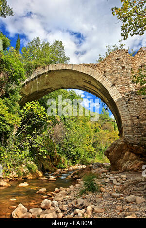 Old stone arched bridge over Neda river, in Neda canyon, at the 'borders' of Messinia & Ileia, Peloponnese, Greece - Stock Photo
