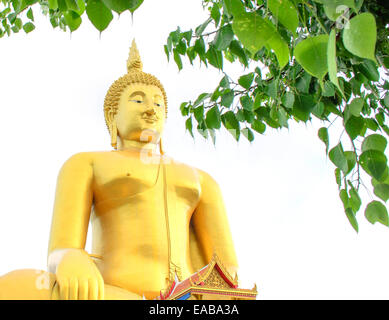 The Golden Seated Buddha Image and Pipal leaf on White Background. - Stock Photo
