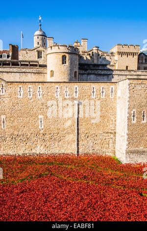 Blood Swept Lands & Seas of Red at the Tower of London - Stock Photo