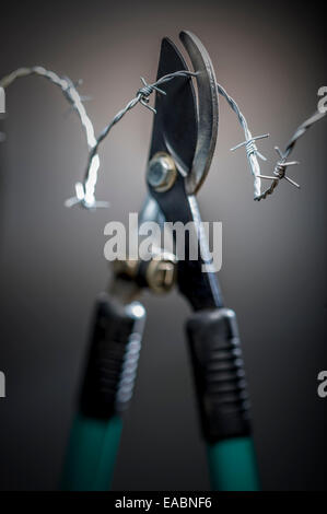 alligator shears with barbed wire - Stock Photo