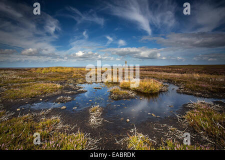 Young Ralphs Cross Westerdale Moor, North York Moors National Park Stock Photo