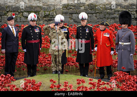 London, UK. 11th November, 2014. On Armistice Day at the Tower of London, the last ceramic poppy of the 888,246 - Stock Photo