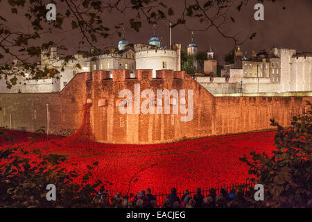 London, England, UK. 11 November 2014. The Tower of London in the night of Armistice Day – the final day to see - Stock Photo