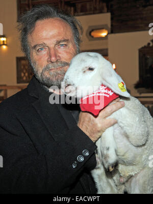 Salzburg, Austria. 11th Nov, 2014. Italian actor Franco Nero posing with a lamb at a traditional Christmas display - Stock Photo