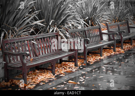 Empty wooden benches after heavy rain shower - Stock Photo