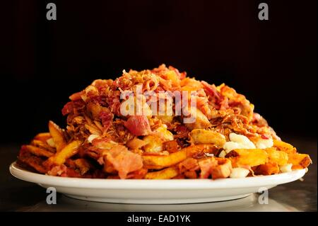 Poutine, a Canadian fast food specialty, Quebec Province, Canada - Stock Photo