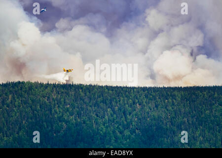 Forest Fire,Plane,Smoke,Firefighting - Stock Photo
