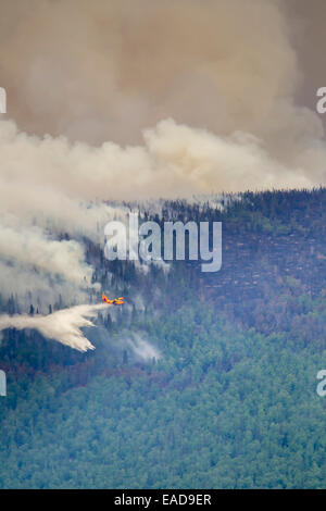 Smoke,Plane,Firefighting,Forest Fire - Stock Photo