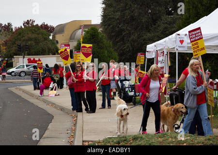 Roseville California Usa 11th November 2014 Roseville