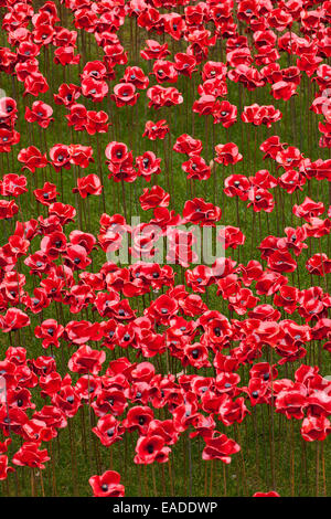 Blood Swept Lands and Seas of Red display at the Tower of London - Stock Photo