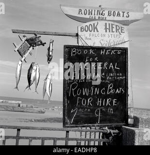 1950s, Historical picture of showing a sign for hiring rowing boats and mackeral fishing at the seafront, Douglas, - Stock Photo