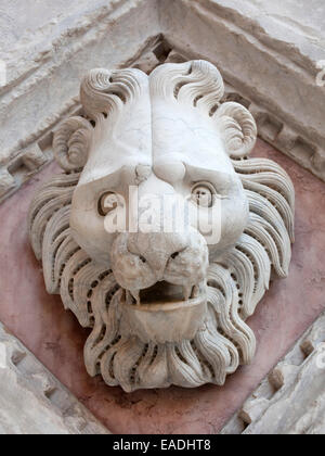marble detail of carved  head of lion on church in Siena - Stock Photo