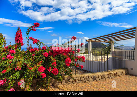 Aeolian house with a beautiful plant of Bougainvillea - Stock Photo