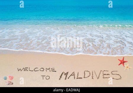 turquoise water and golden sand with shells and sea stars with 'welcome to maldives' written on it - Stock Photo