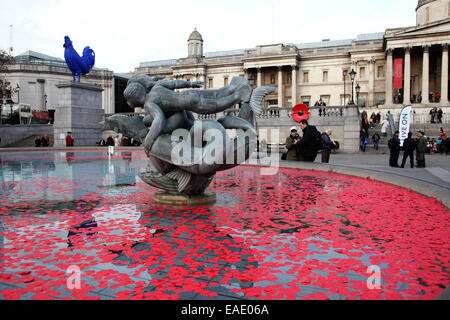 London, UK. 11th November, 2014. Armistice Day: Floating poppies in a fountain in Trafalgar Square in London, UK. - Stock Photo