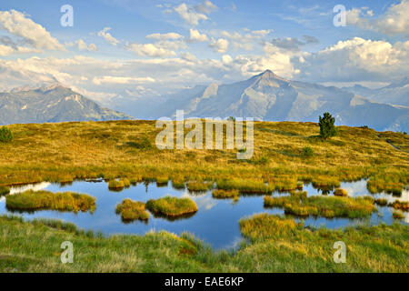 Pond on Melchboden Mountain, Zillertal Alps at the rear, Kälberboden, Zillertal valley, Tyrol, Austria - Stock Photo