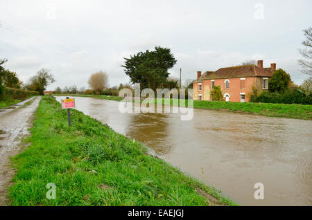 Burrowbridge, UK. 13th November, 2014. UK Weather: Banks of the river Parrett nearly to the top with floodwater - Stock Photo