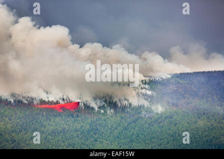 P3 aircraft dumps retardant to suppress the Hastings wildland forest fire near Murphy Dome north of Fairbanks, Alaska. - Stock Photo